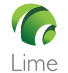 Lime Consultancy - Business Finance logo
