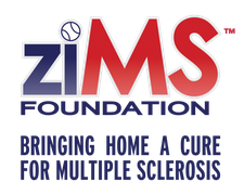 ziMS Foundation logo