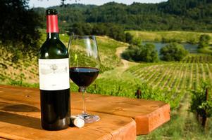 Napa Valley Wine Tasting & Travel Night