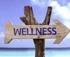 Essential Oils & Wellness, LLC. logo