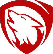 Cyber Security Training Co. Ltd. logo