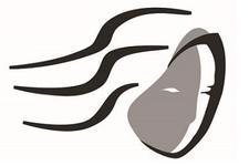 Artemis Charitable Foundation logo