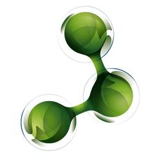Brainitaly logo