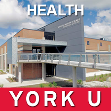 York University - Faculty of Health logo