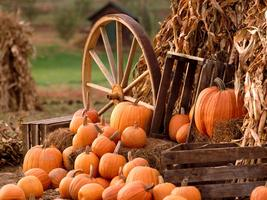 Free Family Fall Harvest Festival