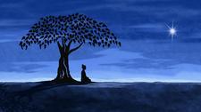 Insight Meditation Scottsdale logo