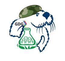 [Startup Weekend + GDG] Monterey Bay Bootcamp