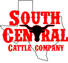 South Central Cattle Company logo
