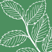 Massachusetts Grower Advocacy Council logo