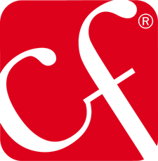 CI.EFFE. CONSULTING logo