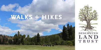 Summit Loop Geology Hike, Smith Rock State Park
