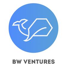 BW Ventures logo