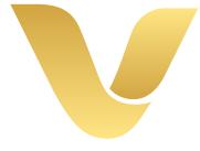 VNIS Education logo