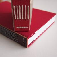 Bookbinding: Long & Link Stitch