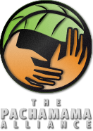 Volunteer at The Pachamama Alliance's Annual Luncheon 2013