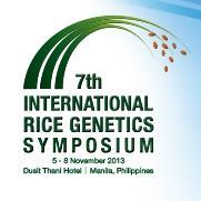 Let's talk GM rice!