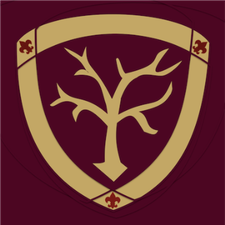 3rd Doncaster East Scout Group logo