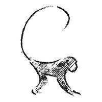 Ido Portal Movement Experience - Movement X