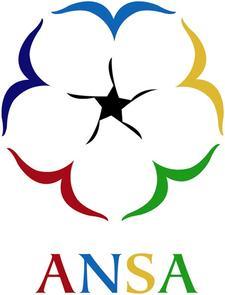 African Nova Scotian Affairs  logo