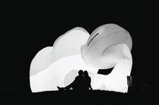 Maroochy Music & Vis Arts Festival logo