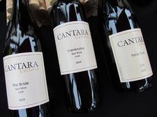 Cantara Cellars logo