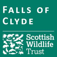 Falls of Clyde Wildlife Reserve and Visitor Centre logo
