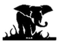 San Antonio Republican Women logo