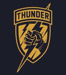 Team Thunder Wrestling logo