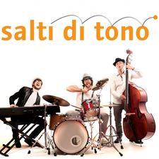 """Centro di Studi Musicali """"Salti di Tono"""" logo"""