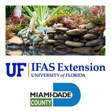 UF/IFAS Extension Service Miami-Dade County- Florida Yards and Neighborhoods Program logo