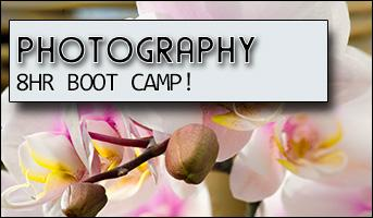 PHOTOGRAPHY WORKSHOP - 8 hr Boot Camp.