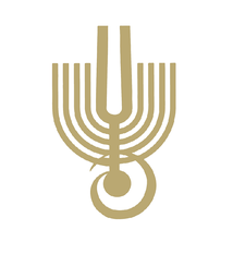 American Friends of the Israel Philharmonic Orchestra logo