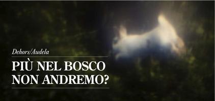 Dehors/Audela - PIÙ NEL BOSCO NON ANDREMO?