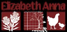 Elizabeth Anna LLC logo