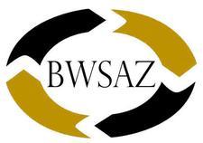 Black Wall Street Arizona Inc logo