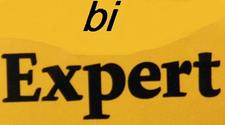 BI Expert Community logo