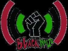 Black Noize Media logo