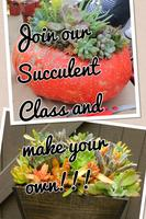 Seasonal Decor: Succulent Centerpieces