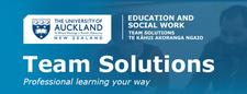 Team Solutions logo
