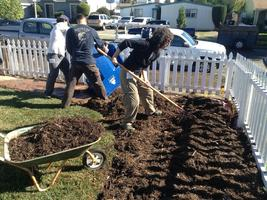 Building Healthy Soil & Grading for Rainwater Capture