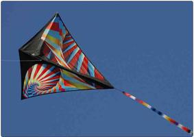 Design and Construct your own kite: Children K-6 - Oatley Library