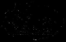 Singapore Space & Technology Association (SSTA) logo