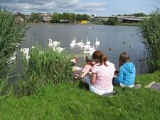 Benton Quarry Park, Killingworth Boating Lake & Springfield Park logo