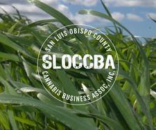 SLOCCBA logo