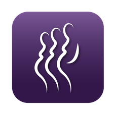 The Pregnancy in Prison Statistics (PIPS) Project logo