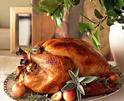 ACM Family Thanksgiving Feast 2013
