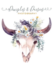 Dimples & Daisies Photography logo