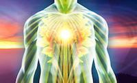 Inner Wellness Portal logo