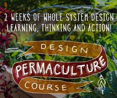 Permaculture Design Certificate