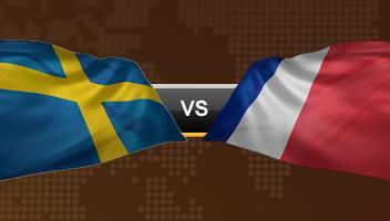 UEFA EURO 2012 - Sweden vs. France - Group D